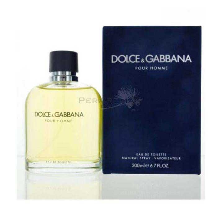 dolce gabbana pour homme parfum