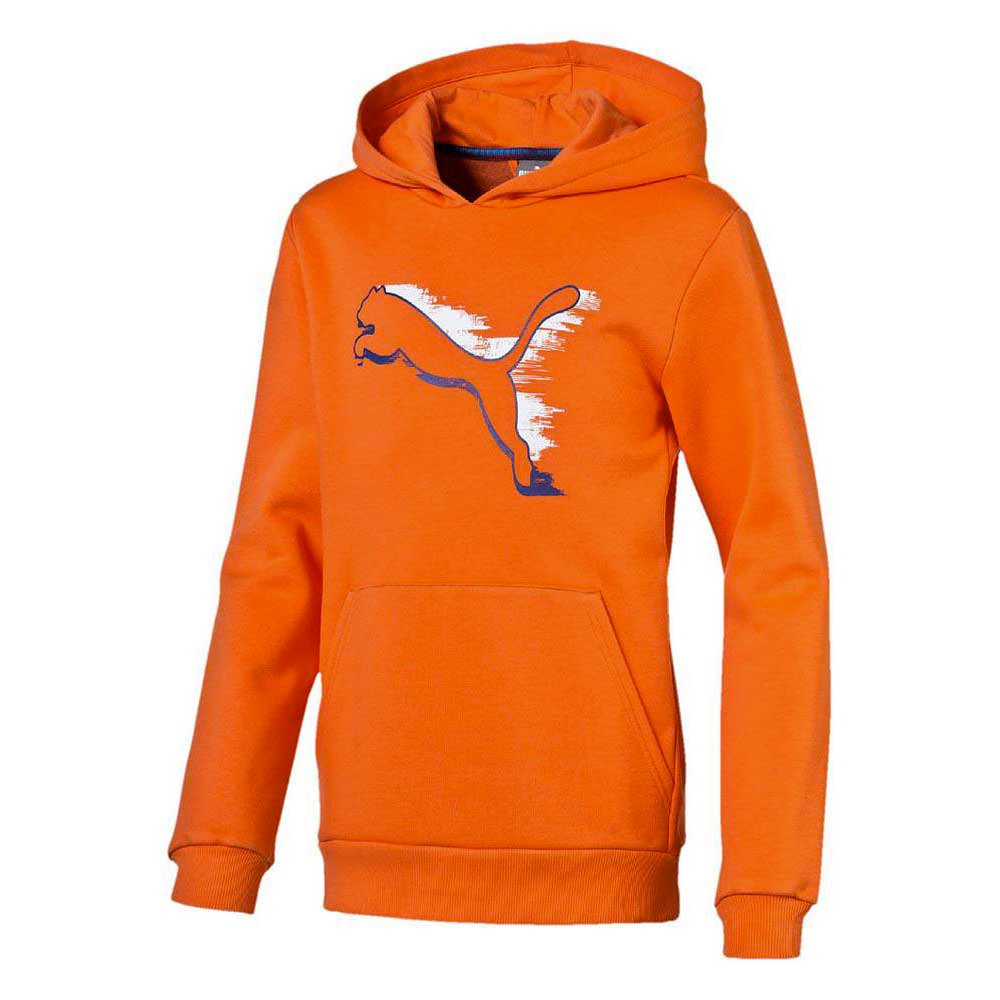 Puma Fun Graphic ESS Hooded Sweat Junior