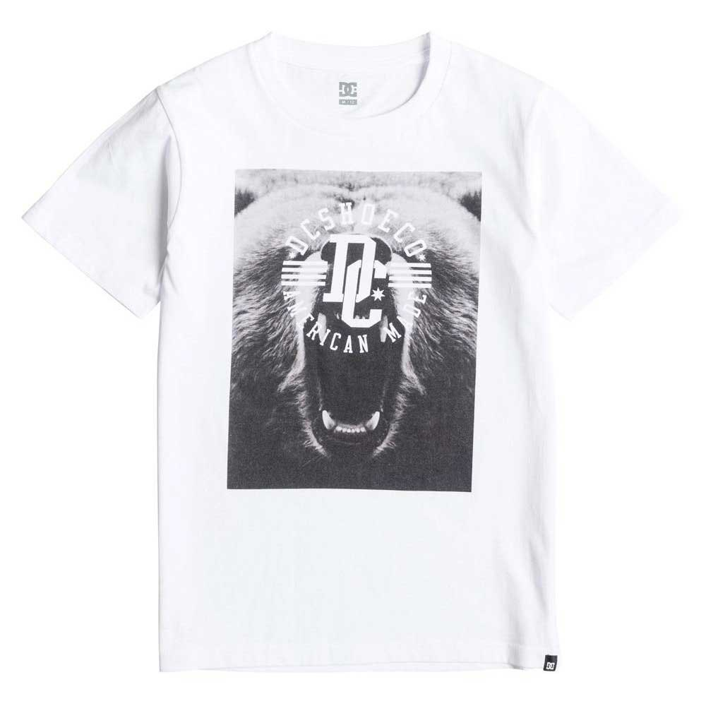 Dc shoes Bearstar