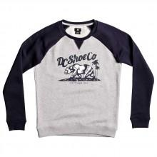 Dc shoes Bear And Palms Raglan Crew