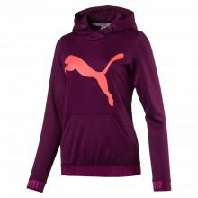 Puma Urban Sports Big Cat Hoodie