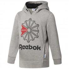 Reebok classics Foundation Large Starcrest Hoody