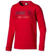 puma-sweatshirt-alpha-graphic-crew