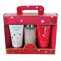 Grace cole Fig&Cranberry Gel 100ml+Body Cream 100ml+Sponge